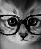 gato gafas ego