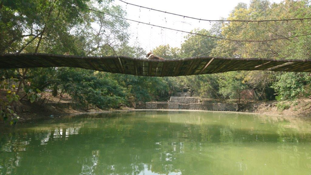Agra - DSC_1572.jpg