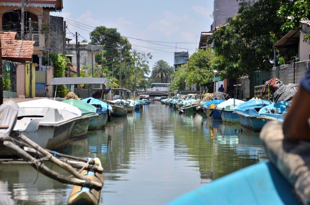 Negombo - DSC0979.jpg