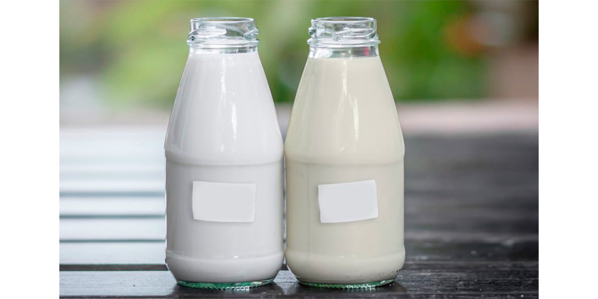 соевое молоко,коровье молоко,КОМУС