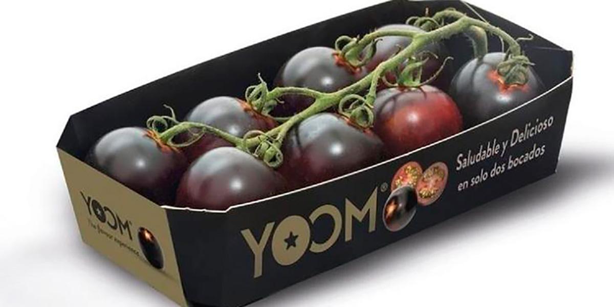 помидоры,умами,Yoom,Испания