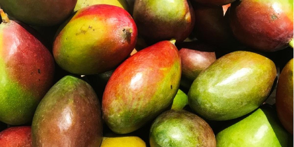 Манго, фрукт
