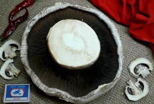 шампиньон, гриб-гигант, Иркутская область