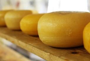 сыр, производсьтво, Россия, рекорды