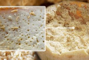 Сардиния, сыр с червями, Касу марцу