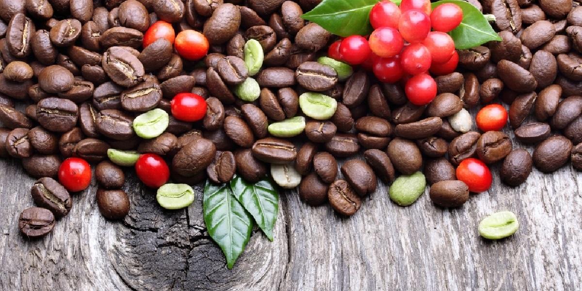 Кофе, зёрна, робуста
