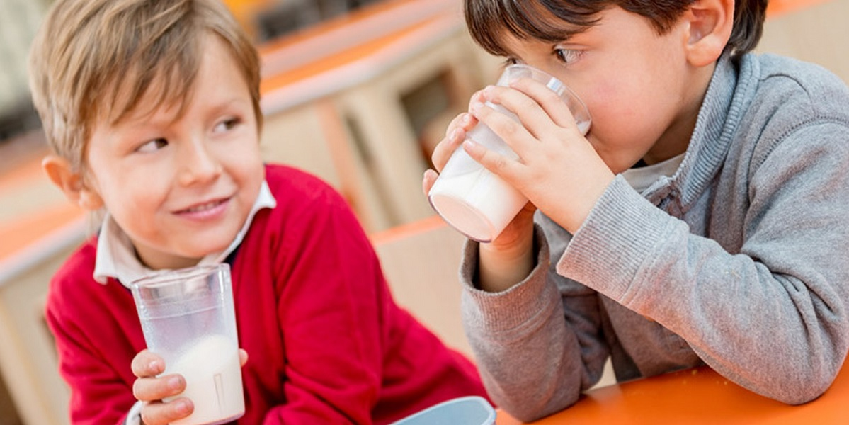школьное питание. проверка, просроченное молоко