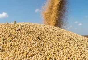 соя, XtendFlex, ГМО, Еврокомиссия