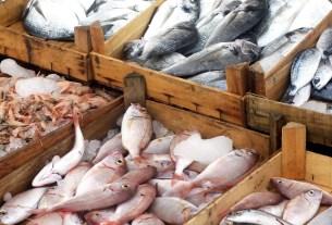 Россельхознадзор, ковид-19, экспорт рыбы, Китай-Россия