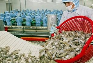 XpertSea, креветки, Вьетнам, проверку средней массы тела (ABW)