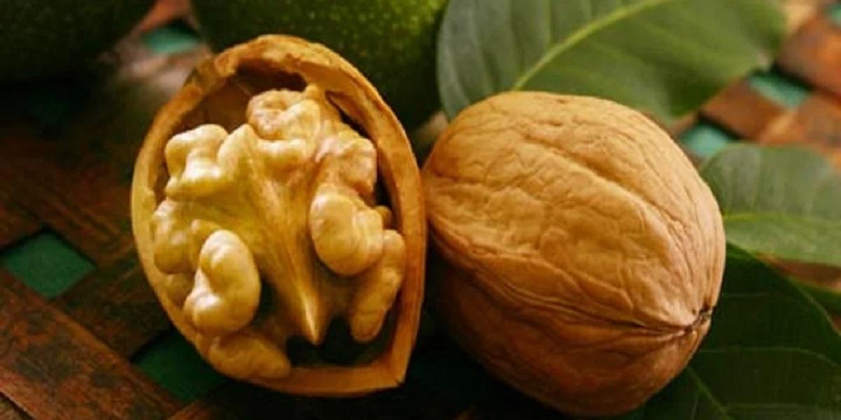 ученые США, мясо опасно, продукты с антиоксидантами, грецкие орехи полезны