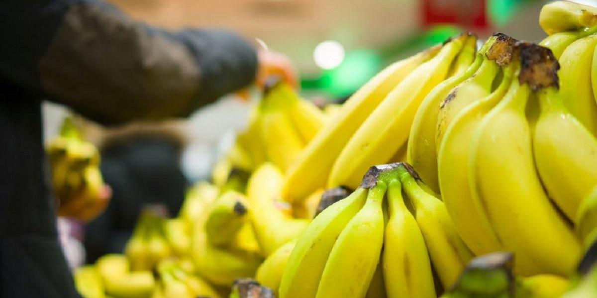 АКОРТ, бананы, импорт, ритейл