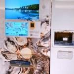 устрицы вендинг, Япония, японские автоматы, деликатес из автомата