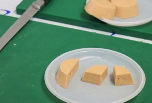 НОЦ «Живые системы», сыр из чечевицы, чечевичный сыр, ВГУИТ