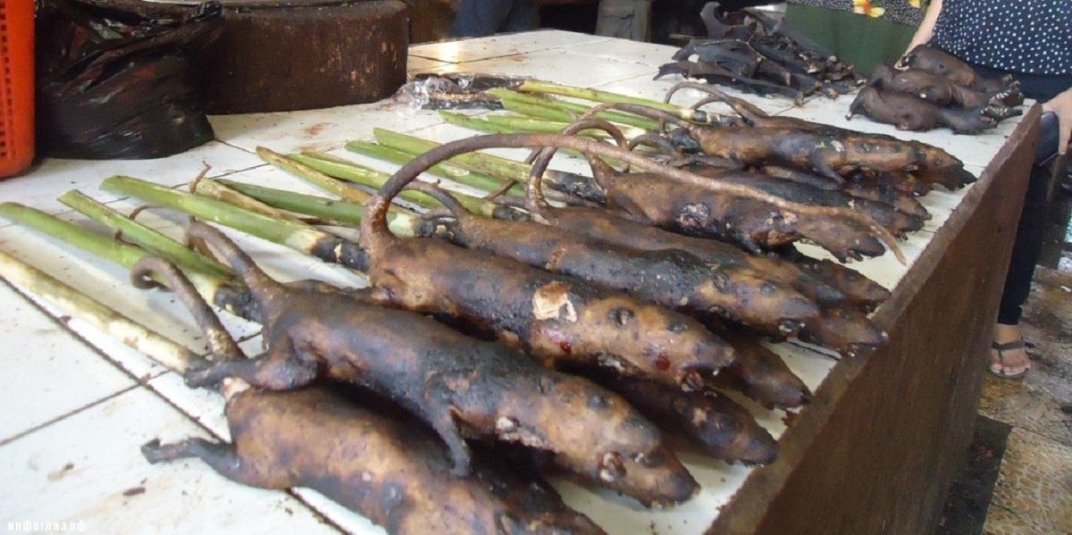 ВОЗ, мясо диких животных, коронавирус, жареная крыса, китайский рынок