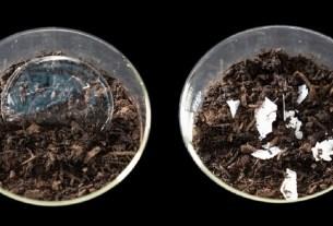 экология, ферменты в пластике, разложение пластика, полимолочная кислота