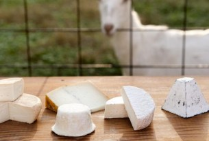 «АгриВолга», «Углече Поле», козий сыр, скоро сыр