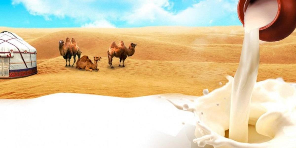 Экспорт, Египет, молочная продукция, Россельхознадзор