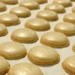 AB InBev, искусственные яичные белки, AB InBev ZX Ventures, Clara Foods