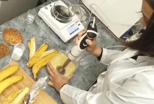 АлтГТУ, банановая упаковка, десерт-упаковка, упаковка из бананов, новая разработка