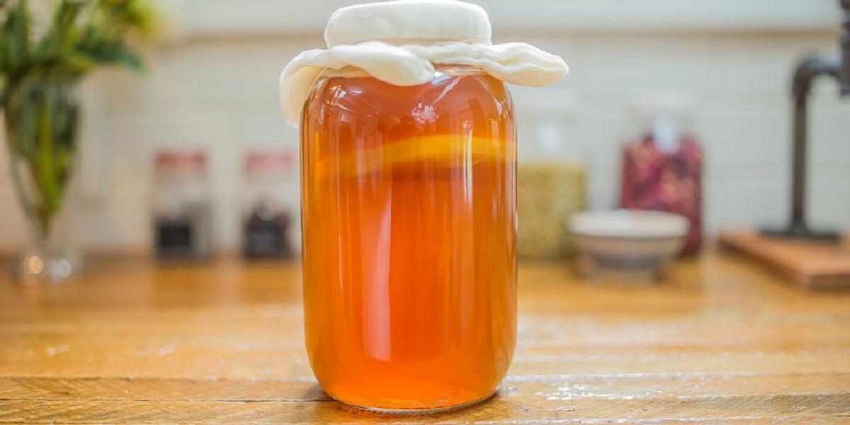 чайный гриб, полезный напиток, компания «ТиБи»