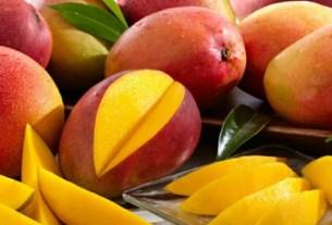 манго сад, макадамия, Квинсленд