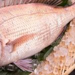 лещ «мадай», ГМО лещ, улучшенный ген, белковый лещ, Regional Fish