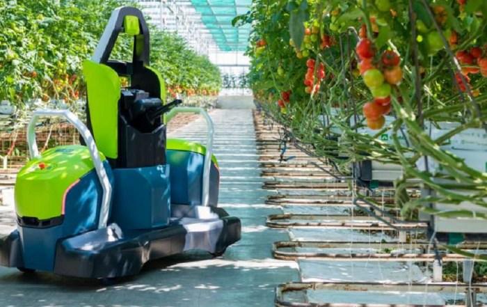Голландия, робот-листорез, Kompano, Priva, GreenTech, уборка урожая, томаты