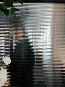 cristal laminado, serigrafía, película de colores, vinilo adhesivo, texturas, cristal templado, vidrio pintado, espejos envejecidos, cristales monolíticos, cristales grabados, cristales de colores, vidrios acústicos, vidrios biselados, vidrios curvos.