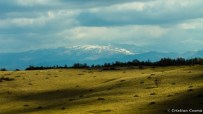 After winter landscape