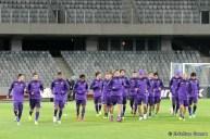 Pandurii Tg Jiu - Fiorentina_2013_11_06_050