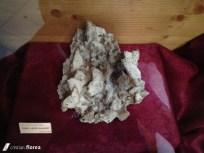muzeul de mineralogie 13