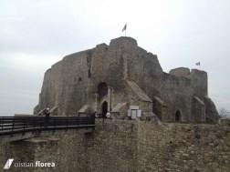 cetatea neamtului 1