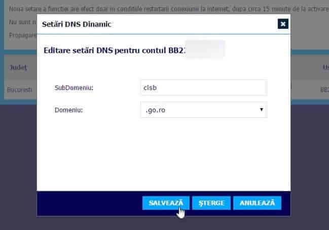 setari DNS dinamic