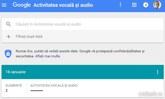 activitate vocala google