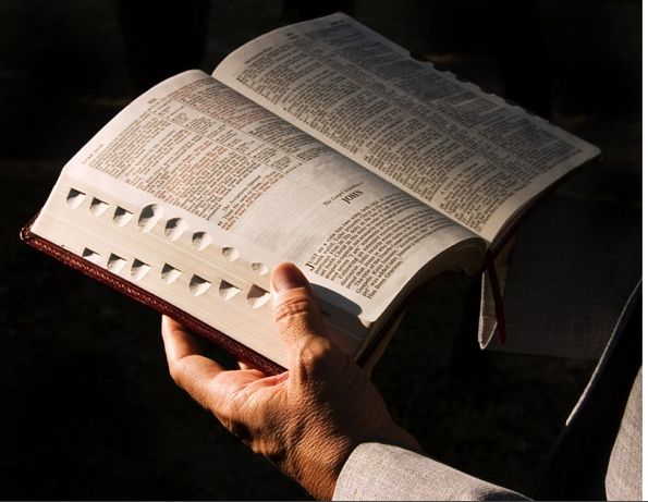 Bible595x461