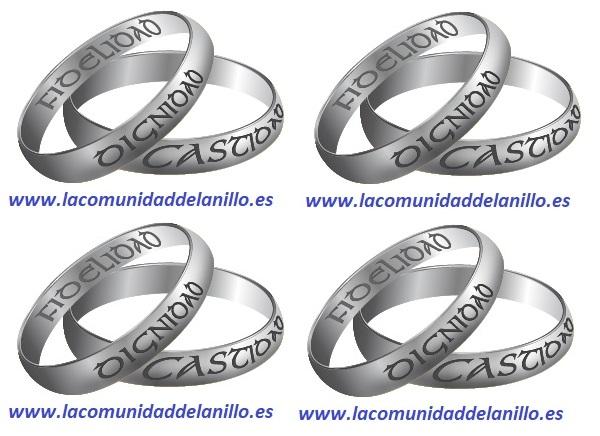 La comunidad del anillo es un lugar de encuentro para la promoción de los valores del matrimonio y la familia