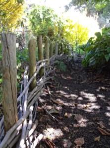 Peaceful path, SF Botanical Garden