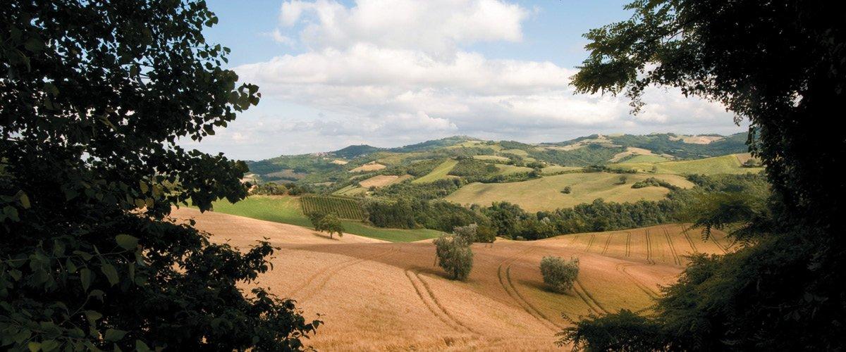 Pian del Bruscolo - Itinerari tra storia e memoria
