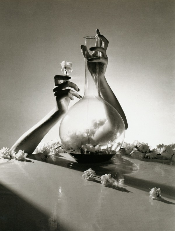cristinaarce_biography_master_photographer_horst06