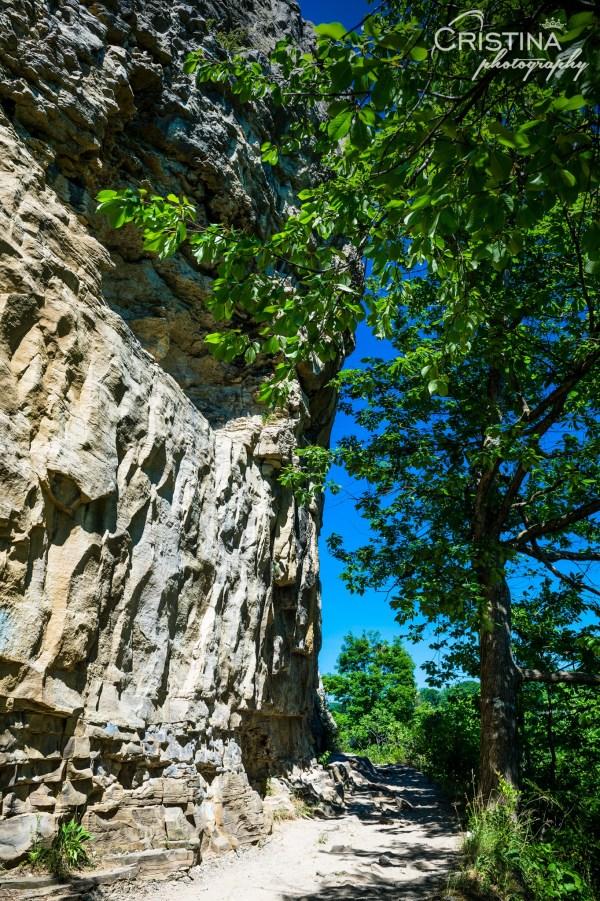 cristinaphotography_cristinaarce_travel_photographer_niagara_glen_nature_reserve_06