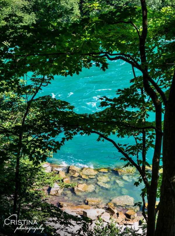 cristinaphotography_cristinaarce_travel_photographer_niagara_glen_nature_reserve_12