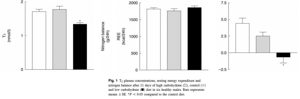 רמות בלוטת תריס הורמון ופחמימות (קטוגנית) תזונה נמוכה מאוד - T3 ופחמימות