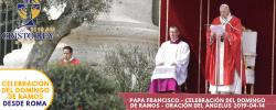Papa Francisco – Celebración del Domingo de Ramos – Oración del Ángelus 2019-04-14