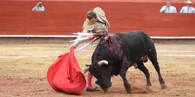 Solicitarán negar permisos para las corridas de toros en Tizayuca