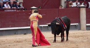 Organización se opone a corrida de toros en Tizayuca