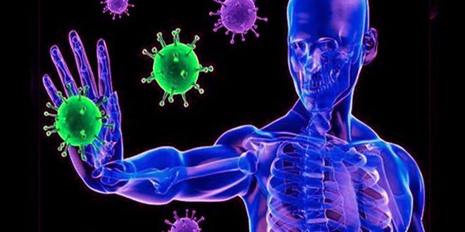 Sistema inmunológico - Criterio Hidalgo