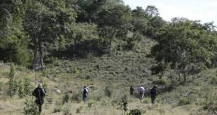 Por ataque felino, suspenden clases en Valle de Bravo, Estado de México