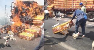 Camión de pollos se incendia sobre México-Laredo, en Santiago de Anaya