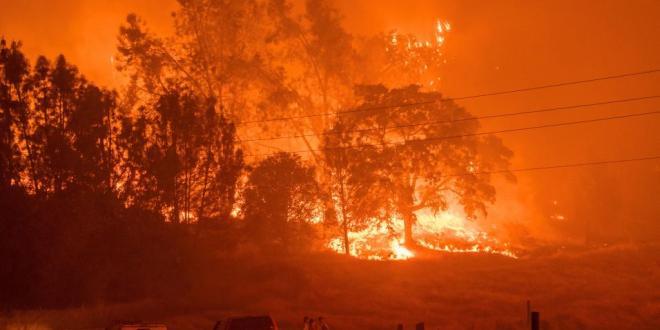 En solo 72 horas, se registran 5 incendios en Hidalgo